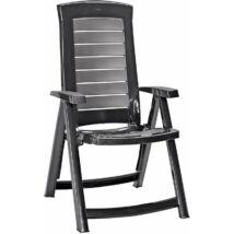 ALLIBERT VERMONT MŰRATTAN KERTI FOTEL Kerti székek Kerti